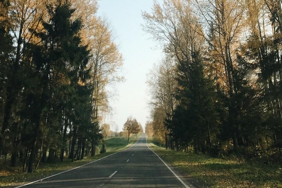 droga samorządowa